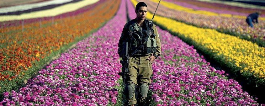 Explosão de cores em Israel